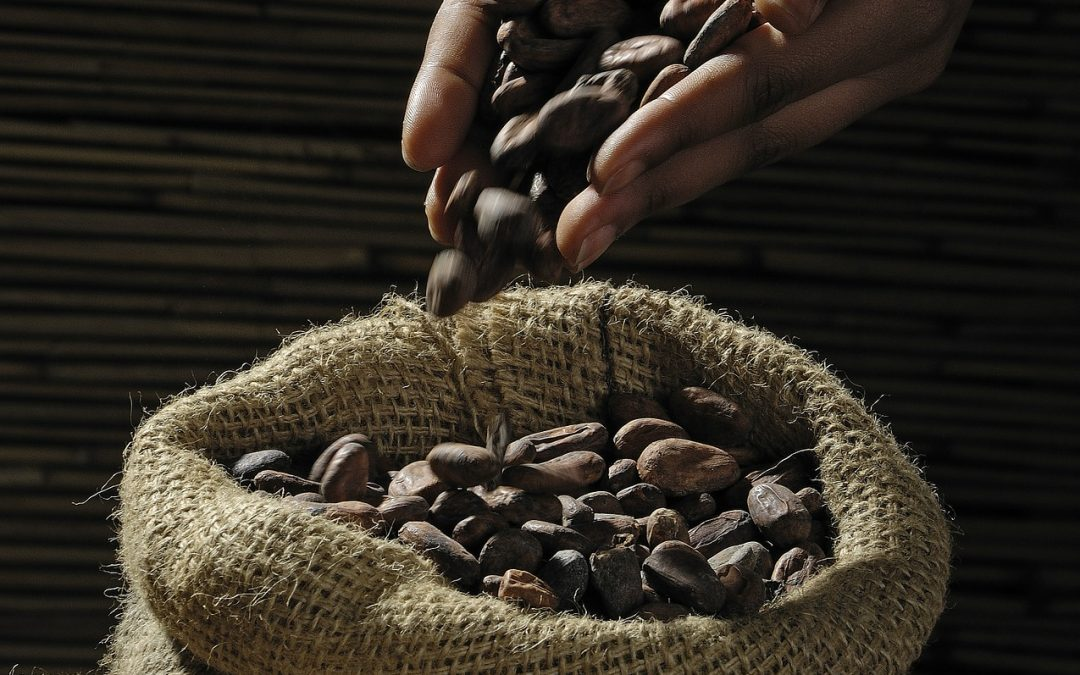 Cargill and Nestlé team up to support Indonesian cocoa farmers