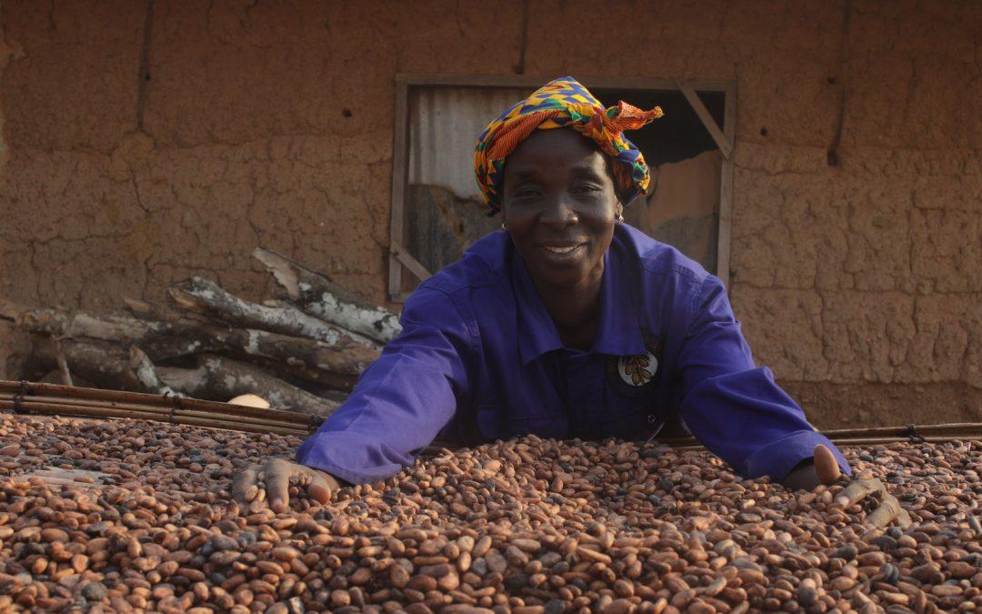 85% income boost for Fairtrade cocoa farms, survey shows